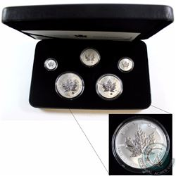 2004 Canada Silver Maple Leaf Privy 5-coin Set (Missing outer sleeve and some coins are toned). TAX