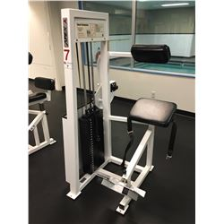 APEX BACK EXTENSION MACHINE, WITH 250 LBS WEIGHT