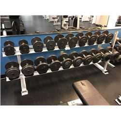 DUMBELL SET INC. PAIRS OF 10-60 LB WEIGHTS, RACK INCLUDED