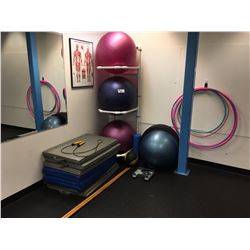 REMAINING CONTENTS OF ROOM INC. EXCERICISE BALLS, MATS, JUMP ROPE, RACK AND MORE