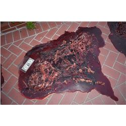 TRUE BLOOD DEAD VAMPIRE GORE & GUTS SPLATTER SCREEN MATCHED 4