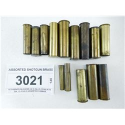 ASSORTED SHOTGUN BRASS