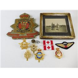 ASSORTED CANADIAN PINS & BADGES