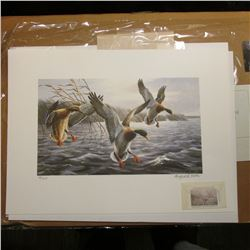 1993 Iowa Migratory Waterfowl Stamp Design Print No. 36/600 in original folder, hand autographed wit