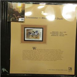 1997 Louisiana $5 Waterfowl Stamp, Ring-necked Duck, Mint, unused, in original holder with literatur