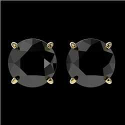 2 CTW Fancy Black VS Diamond Solitaire Stud Earrings 10K Yellow Gold - REF-49F6M - 33085