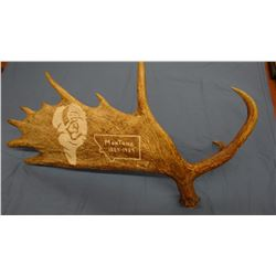 Carved moose antler, buffalo head and MT logo, B. K. Pettit