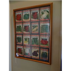 Garden seed packets framed display