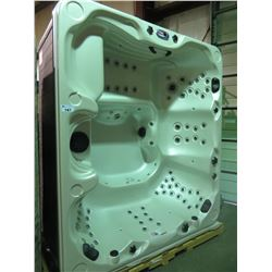 CAL SPAS AMERICAN SERIES HOT TUB WITH 85 HALO SS JETS (16 RAIN JETS) GATE VALVE, LED WATERFALL