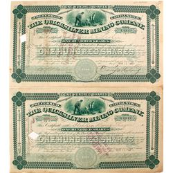 Two Quicksilver Mining Company Stock Certificates