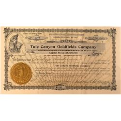 Tule Canyon Goldfields Stock Certificate, Nevada 1908