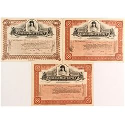 Bingham Mary Copper Company Certificates