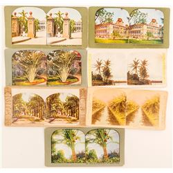 7 Hawaiian Tree Scenes Stereoviews