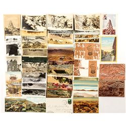 Arizona Postcard Collection with 1 RPC (49)