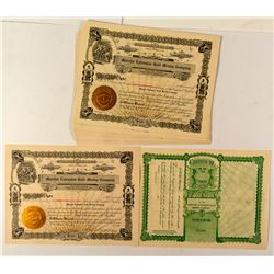 25 Murchie Extension Gold Mining Company Stock Certificates