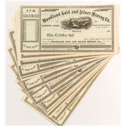 Woodland Gold & Silver Mining Stock Certificates (18)