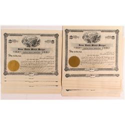 Boise Basin Mines Merger Stock Certificates (50+)