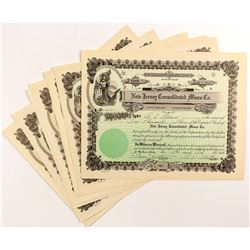 New Jersey Consolidated Mines Co. Stock Certificates (8)