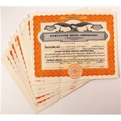 Lucky-Custer Mining Corporation Stock Certificates (16)