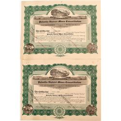 Palmilla District Mines Consolidation Stock Certificates (2)