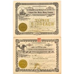 Two Calumet Mining Stock Certificates