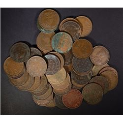 50- MIXED DATE CANADIAN LARGE CENTS