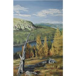 Framed oil on board painting of an autumn mountain and river scene signed by artist Marla Wilson, 36