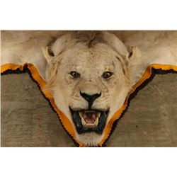 White African Lion Rug