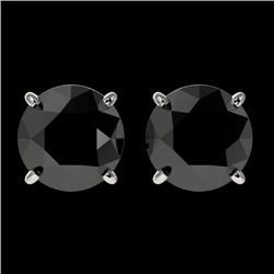 2 CTW Fancy Black VS Diamond Solitaire Stud Earrings 10K White Gold - REF-49T6X - 33083