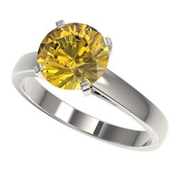 2.50 CTW Certified Intense Yellow SI Diamond Solitaire Ring 10K White Gold - REF-701M8F - 33047