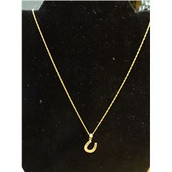10k Gold Chain with Horseshoe Pendant