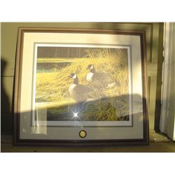 limited edition ducks unlimited print , geese by Patrice Wolput