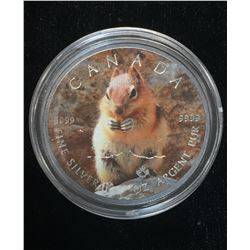 2016 $5 Wildlife - Chipmunk