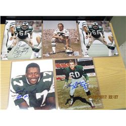 Five Eagles Laminated Photos