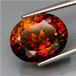 Natural Whisky Color Topaz 16.60 Carats - VS