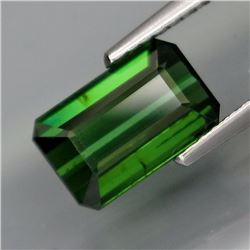 Natural Top Green Tourmaline  2.40 Cts