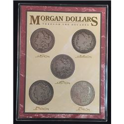 Lot of Five USA Morgan Dollars in Acrylic Holder