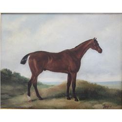 Modern Oil on Canvas, Horse