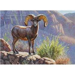 Stunning hand painted Desert Big Horn Sheep art piece, personally created by renowned Cynthie Fisher
