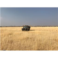 7 day Exciting and Unique Namibia Hunt for One Hunter and One Observer
