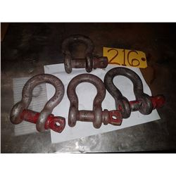 Lot of D Shackle
