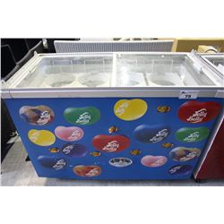 COMMERCIAL ICE CREAM COOLER
