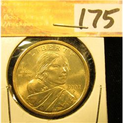 2002 P Gem Uncirculated Native American Dollar.