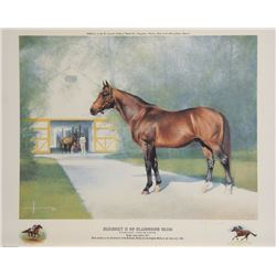 Henk Vos, Nijinsky II of Claiborne Farm, Offset Lithograph