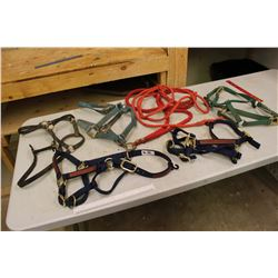 Lot Of Nylon Halters (5)