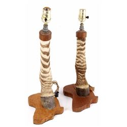 Pair of Taxidermy Zebra Leg Lamps w/ Africa Base
