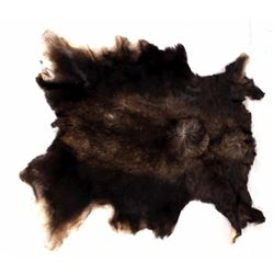 Tanned Montana Moose Hide