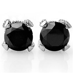 4.0 CTW Vs Certified Black & White Diamond Solitaire Stud Earrings 18K White Gold - REF-115R8K - 118