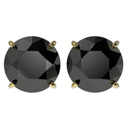 4.19 CTW Fancy Black VS Diamond Solitaire Stud Earrings 10K Yellow Gold - REF-100W2H - 36713