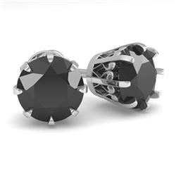 3.0 CTW Black Diamond Stud Solitaire Earrings 18K White Gold - REF-100W2H - 35703